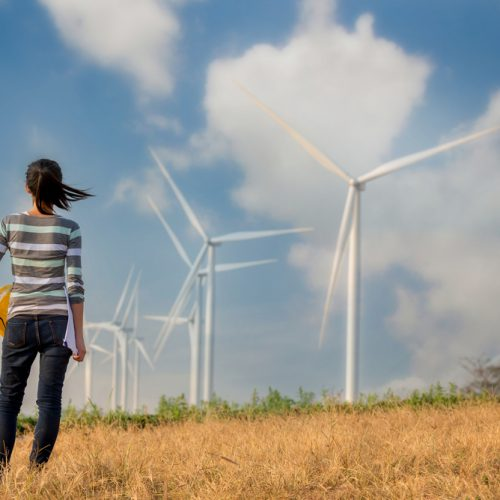 Environmental Services wind power